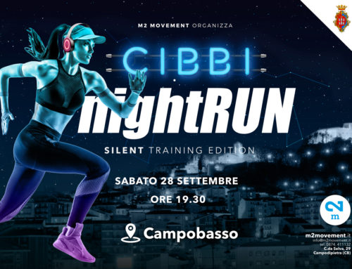 CIBBI NightRUN  training edition